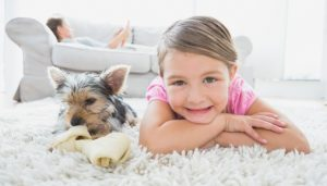 Indoor Air Quality Technology Can Help Pet Allergy Sufferers